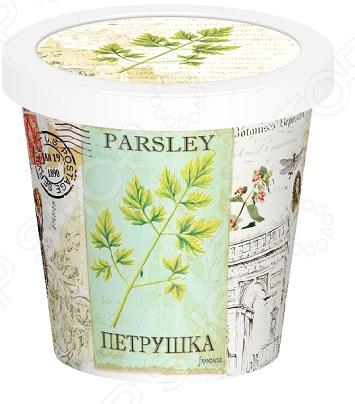 Набор для выращивания Rostokvisa «Петрушка»