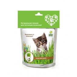 фото Трава для кошек Happy Plant hp-41