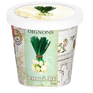Купить Набор для выращивания Rostokvisa «Зеленый лук»