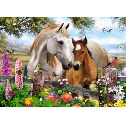 Купить Пазл 260 элементов Castorland B-27309 «Лошади»