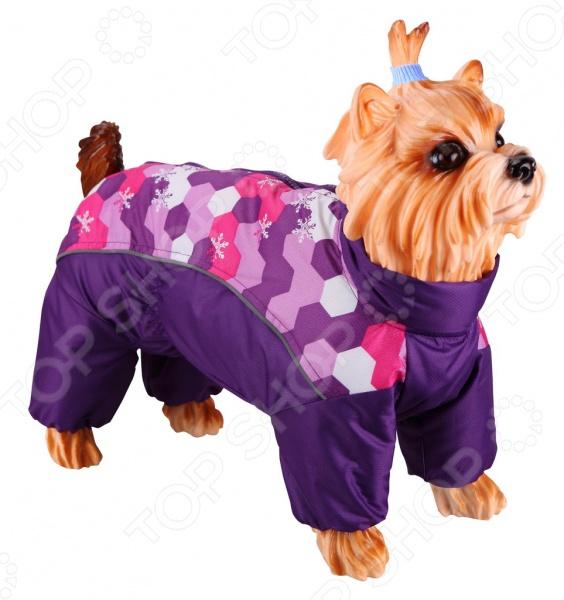 Комбинезон-дождевик для собак DEZZIE «Мальтийская болонка». Цвет: фиолетовый дождевик для собак