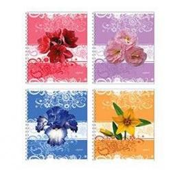 фото Тетрадь в клетку ламинированная Erich Krause «Цветы в узорах». В ассортименте