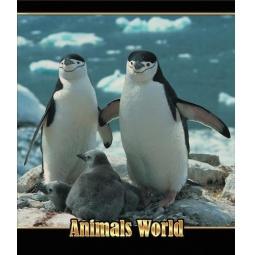фото Тетрадь в клетку лакированная Пересвет «Мир животных». В ассортименте