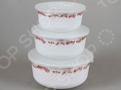 Набор контейнеров для продуктов Rosenberg 1217-588