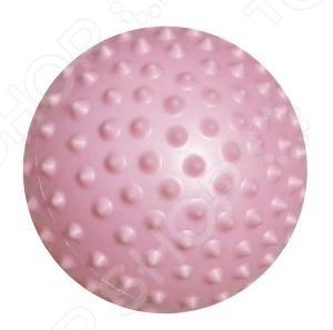 Мяч гимнастический Atemi AGB-02-10 цены