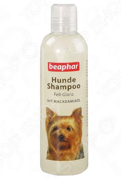 Шампунь для собак с чувствительной кожей Beaphar Pro Vitamin. Macadamia OilШампуни и кондиционеры для собак<br>Шампунь для собак с чувствительной кожей Beaphar Pro Vitamin. Macadamia Oil станет отличным дополнением к набору гигиенических средств по уходу за домашним питомцем. Он изготовлен по инновационной технологии, прекрасно очищает шерсть от различных загрязнений и придает ей блеск и шелковистость. В состав шампуня входит натуральное масло макадамии, обладающее регенерирующим, смягчающим, противовоспалительным и увлажняющим действием. Меры предосторожности: следует избегать попадания шампуня в глаза и уши животного, использовать только по назначению.<br>