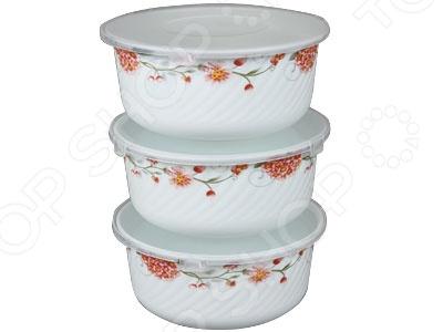 Набор контейнеров для продуктов Rosenberg «Совершенство». Уцененный товар