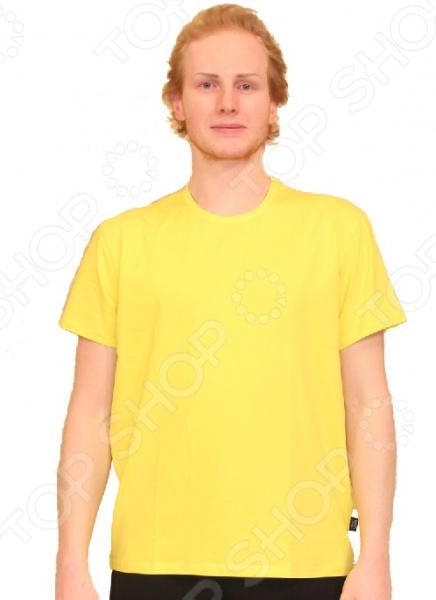 Футболка Dodogood «Анатолий». Цвет: желтыйФутболки<br>Футболка Dodogood Анатолий это удобная футболка с коротким рукавом, которая подходит для любого времяпровождения. Куда бы вы ни собрались: прогуляться по городу или съездить на природу, эта футболка будет с вами. Кроме того, футболку такого типа можно использовать и под свитера или батники для утепления. Можно отметить следующие характеристики данной футболки:  Округлый вырез горловины;  Все швы обработаны специальными нитями, что бы не натирать кожу;  Новые технологии в изготовлении данного изделия позволят долго сохранять форму. Футболка сшита из мягкого материала 95 хлопок, 5 лайкра . Хлопок прекрасно отводит влагу от тела и сохраняет ваш комфорт в любых погодных условиях. Даже после многократных стирок футболка будет отлично выглядеть и не полиняет.<br>