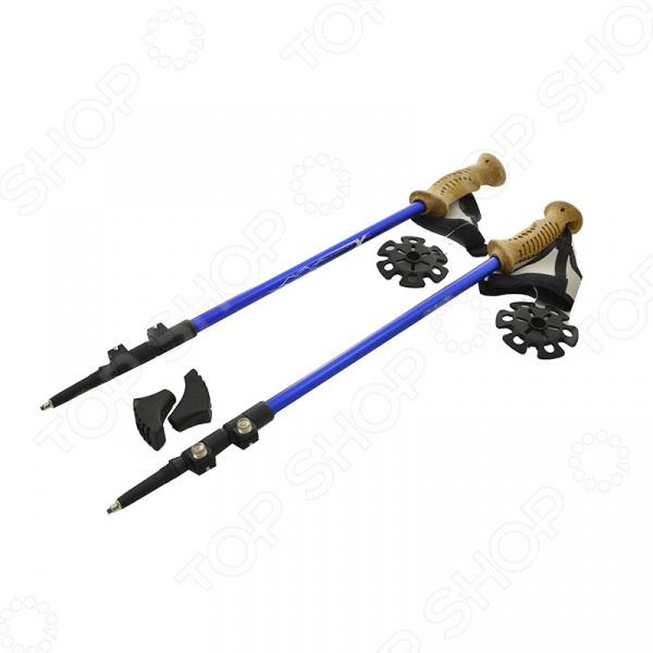 Палки для скандинавской ходьбы петрозаводск