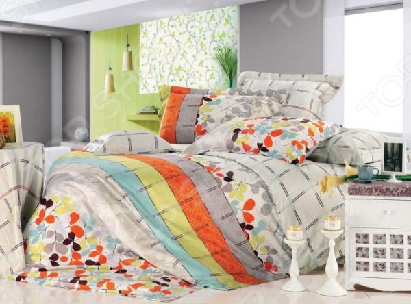 Комплект постельного белья Tiffany's Secret «Осенний блюз»