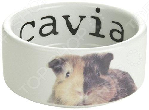 Миска для морской свинки Beeztees 801710 Cavia