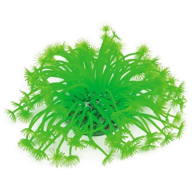 фото Мягкий коралл DEZZIE «Наяда»