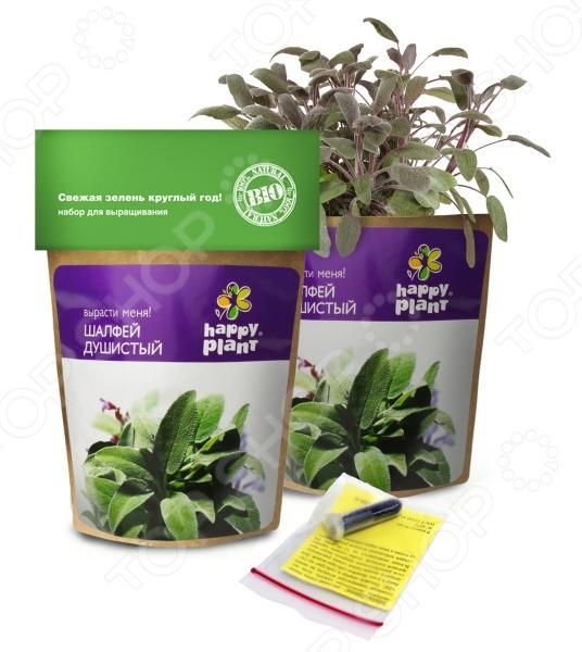 Набор для выращивания Happy Plant «Шалфей»