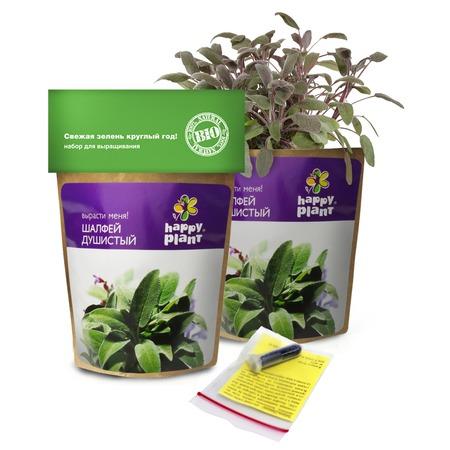 Купить Набор для выращивания Happy Plant «Шалфей»