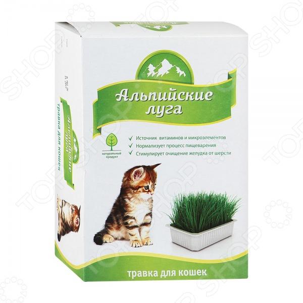 Трава для кошек Альпийские луга А102 - непременно понравиться вашим питомцам. Поедание травы - естественная потребность любого животного. Травка Альпийские луга позволяет нормализовать процесс пищеварения, станет источником клетчатки, углеводов и витаминов. Кроме того, трава стимулирует процесс очищения желудка от шерсти. В отличие от уличной травы не содержит химикатов, тяжелых металлов, микробов и яйца глистов.