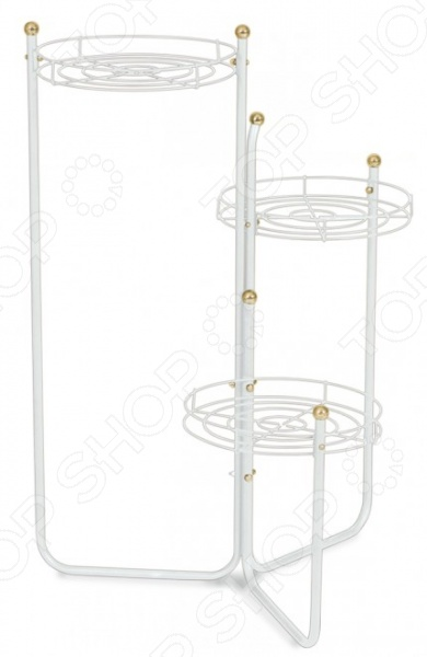 Подставка для цветов Sheffilton Каскад 2Б это мобильная подставка для цветов, которая может стать универсальным решением для любого помещения. На подставке предусмотрено 3 места для цветочных горшков. Максимальная нагрузка на корзину составляет 3 кг, есть возможность регулировать вид расположения кронштейнов. Подставка полностью разборная. Можно отметить следующие характеристики:  Каркас выполнен из металлической трубы D12 мм, прутка D3 мм, пластиковой фурнитуры D24 мм;  Максимальная нагрузка на чашу 3 кг.