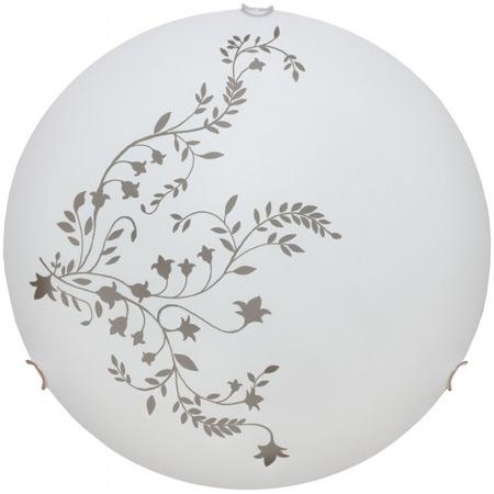 Купить Светильник настенно-потолочный Arte Lamp Ornament A3820PL