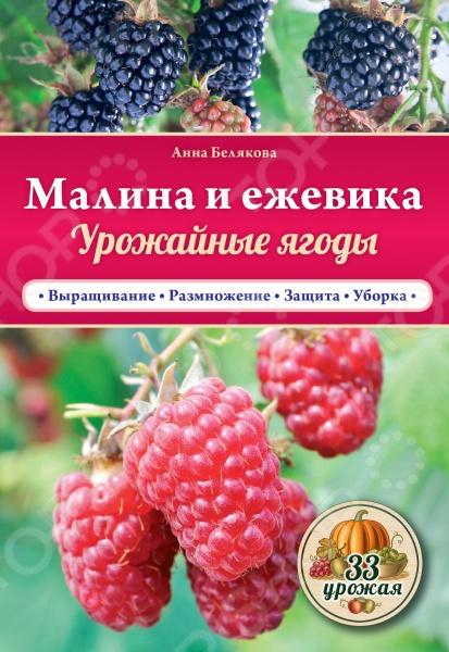 В этой книге вы найдете пошаговую технологию выращивания малины и ежевики - полезных и любимых многими ягод. Вы узнаете об особенностях посадки и размножения этих культур, правильном поливе,обрезке и подкормке. Следуйте рекомендациям и получайте несколько урожаев за один сезон!