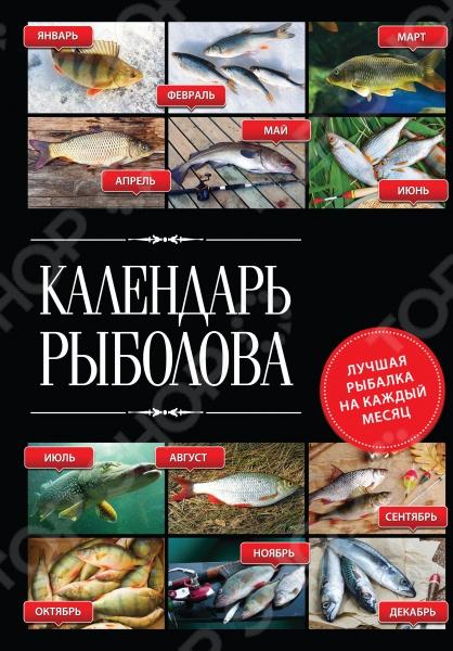 Куда податься, когда лед встал Где искать леща в июле Как зимой ловить с поплавком Что делать в предзимье Ерш, щука, судак, плотва, лещ, окунь, уклейка, карась, карп когда, как и где ловить эту рыбу На эти и многие другие вопросы ответит в своей книге рыбак с богатейшим опытом. В этой книге мы собрали все секреты ловли самой разной рыбы круглый год которые покажут вам, что у настоящего рыбака нет межсезонья! Главное знать рыбацкие хитрости и уметь оперативно реагировать на самые неожиданные повороты в процессе ловли.