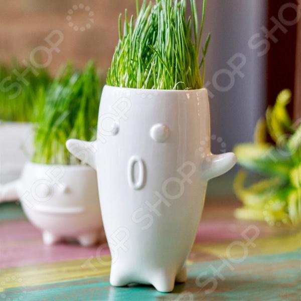 Набор для выращивания Экочеловеки Eco «Тиль» набор для выращивания eco победитель 1021368