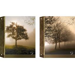 фото Тетрадь на кольцах ламинированная Erich Krause «Пейзаж в тумане». В ассортименте