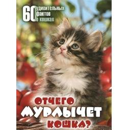 фото Отчего мурлычет кошка?60 удивительных фактов о кошках