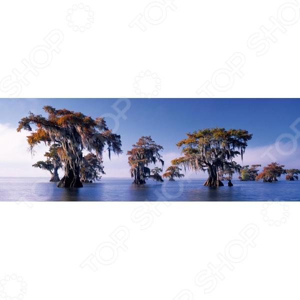Пазл 1000 элементов Heye «Затопленные кипарисы»