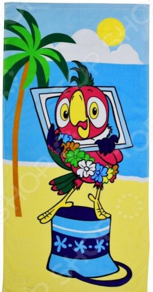 Полотенце махровое Мульткарнавал «Возвращение блудного попугая» 01300115883. В ассортименте куплю попугая жако недорого в екатеринбурге