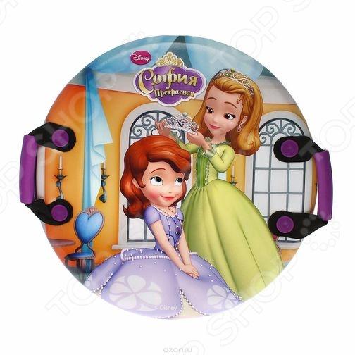 Zakazat.ru: Ледянка Disney «София»