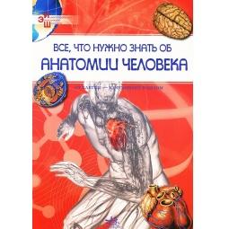 фото Все, что нужно знать об анатомии человека