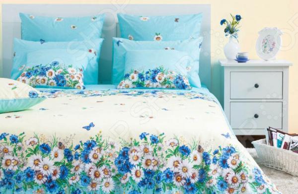 Комплект постельного белья Хлопковый Край «Камилла» 5513/2. СемейныйСемейные<br>Комплект постельного белья Хлопковый Край Камилла 5513 2 это удобное постельное белье, которое подойдет для ежедневного использования. Чтобы ваш сон всегда был приятным, а пробуждение легким, необходимо подобрать то постельное белье, которое будет соответствовать всем вашим пожеланиям. Приятный цвет, нежный принт и высокое качество ткани обеспечат вам крепкий и спокойный сон. Бязь, из которой сшит комплект отличается следующими качествами:  достаточно мягка и приятна на ощупь, не имеет склонности к скатыванию, линянию, протиранию, обладает повышенной гигроскопичностью, практически не мнется, не растягивается, не садится, не выгорает, гипоаллергенна, хорошо отстирывается и не теряет при этом своих насыщенных цветов;  современное нанесение рисунка прекрасно передаёт цвет и мельчайшие детали изображения;  за счёт специального переплетения волокон ткань устойчива к механическим воздействиям.  Перед первым применением комплект постельного белья рекомендуется постирать. Перед стиркой выверните наизнанку наволочки и пододеяльник. Для сохранения цвета не используйте порошки, которые содержат отбеливатель. Рекомендуемая температура стирки: 40 С и ниже без использования кондиционера или смягчителя воды. Постельное белье позволит разнообразить весь ваш интерьер. Ведь застеленная таким красивым комплектом кровать не может не привлекать взгляд. Приятная цветовая гамма и классический рисунок наполнят спальню особым шармом и теплом. Каждая минута, проведенная в комнате, будет вызывать исключительно приятные эмоции. Если к вам внезапно заглянут гости, то они без сомнения оценят ваш удачный вкус. В подарок идёт симпатичный магнитик, который принесет вам множество радостных моментов! Его можно использовать в качестве декорации холодильника или других металлических элементов. Этот комплект может стать прекрасным подарком на свадьбу или удачным подарком на любой праздник для ваших знакомых или родных!<br>