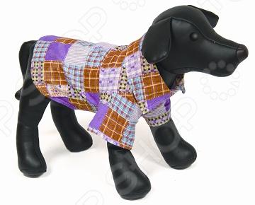 Рубашка для собак DEZZIE «Брок»Одежда для собак<br>Рубашка для собак DEZZIE Брок красивая одежда для вашего любимого питомца. Она сделает вашу собачку самой модной в округе, обеспечит комфорт и забавный вид. Рубашка выполнена в стиле пэчворк и смотрится очень интересно, при этом прекрасно сохраняет форму при носке. Рубашка разработана с учетом анатомических особенностей животных. Из представленного ассортимента можно выбрать размер.<br>