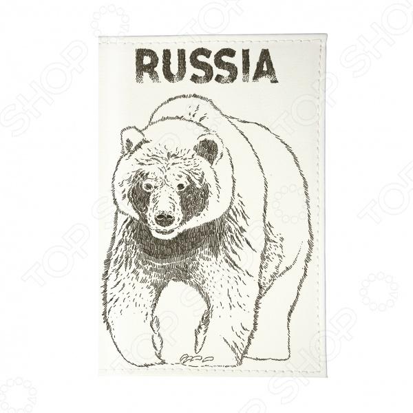 Фото Визитница Mitya Veselkov «Медведь» аксессуар