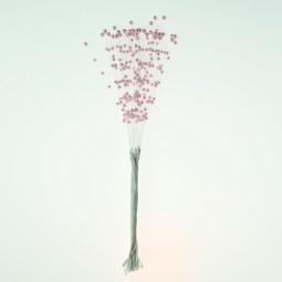 фото Побеги с жемчужинками ScrapBerry's. Цвет: розовый