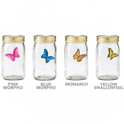 Купить Сувенир «Бабочка в банке». В ассортименте