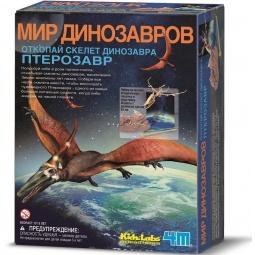 Купить Скелет Птерозавра 4M