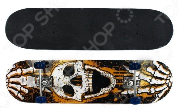 Скейтборд Shantou Gepai Skull скейтборд с какого возраста можно начинать