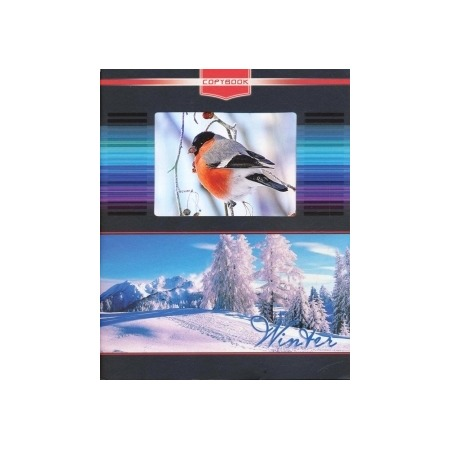 Купить Тетрадь в клетку с вырубкой Ульяновский Дом печати «Зима»