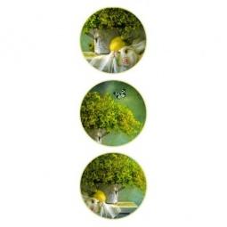 фото Набор тарелок настенных Феникс-Презент 36263