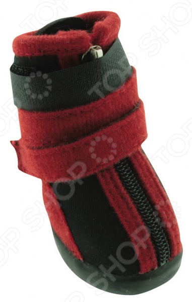 Обувь для собак DEZZIE «Бонапарт»
