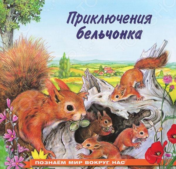 Приключения бельчонкаСказки русских писателей<br>Прекрасно иллюстрированная книжка о приключениях бельчонка, несомненно, доставит много радостных минут маленьким читателям. Для дошкольного возраста.<br>