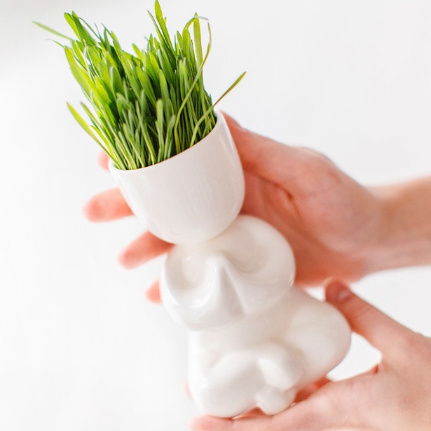 фото Набор для выращивания Экочеловеки Eco «Йог». Цвет: белый