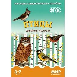 Купить Птицы средней полосы. Наглядное дидактическое пособие