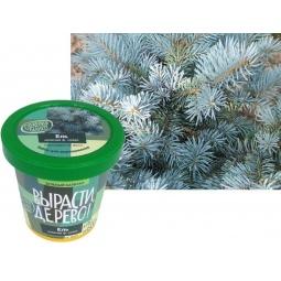 Купить Набор для выращивания Зеленый капитал Вырасти, дерево! «Ель колючая»