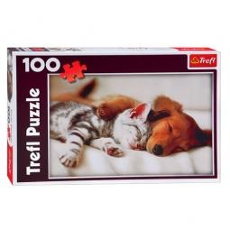 Купить Пазл 100 элементов Trefl «Спящие друзья»