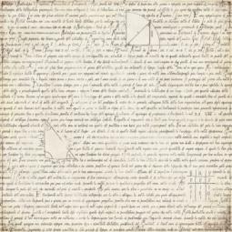 Купить Бумага для скрапбукинга Basic Grey Glossary