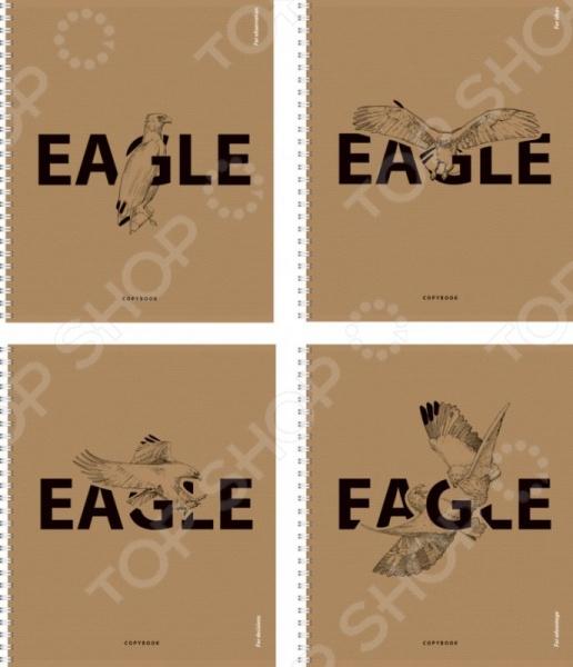 Тетрадь на спирали Erich Krause Eagle. В ассортименте