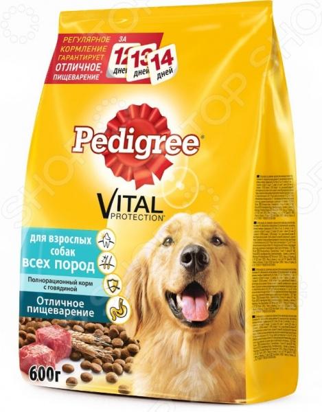 Корм сухой для собак всех пород Pedigree Vital PROTECTION «Отличное пищеварение» с говядинойСухой корм<br>Корм сухой для собак всех пород Pedigree Vital PROTECTION Отличное пищеварение с говядиной сбалансированный рацион для ежедневного питания вашего любимца. Высокая энергетическая ценность удовлетворит потребности животного, при этом у вас не возникнет необходимости скармливать вашему питомцу большие порции. Особенности корма Pedigree Vital PROTECTION:  Оптимальный уровень кальция для укрепления зубов.  Линолевая кислота и цинк, необходимые для здоровья кожи и шерсти.  Витамин E и цинк поддерживают иммунную систему.  Высокоусвояемые ингредиенты и клетчатка для оптимального пищеварения. Если вы решили перевести своего питомца на новый рацион, то делайте это постепенно в течение 7 дней. Просто кормите кошку смесью этого корма с предыдущим, со временем уменьшая количество последнего. Ваш верный друг оценит новое лакомство, ведь корм изготовлен из отборных ингредиентов и отличается превосходным вкусом. Внимание! Не забывайте о свежей воде, которая должна быть постоянно в миске вашего питомца. Рекомендации по питанию:<br>