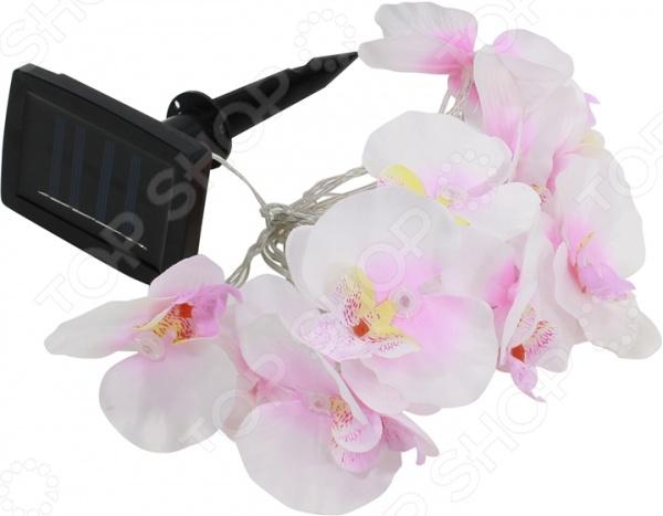 Светильник-гирлянда садовый Светильник-гирлянда Эра SL-PL420-FOD12