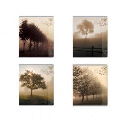фото Тетрадь в клетку ламинированная Erich Krause «Пейзаж в тумане». В ассортименте